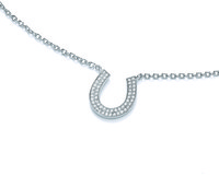 Silver and Cubic Zirconia Horseshoe Necklace