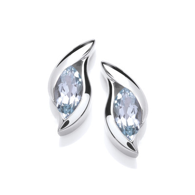 Silver & Cubic Zirconia 'Surfs Up' Earrings